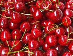 Cherry Blast - Unsweetened Flavor Oil 17890