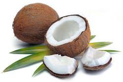 Coconut Cream - Unsweetened Flavor Oil 17896